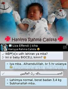 bayi-biocell1