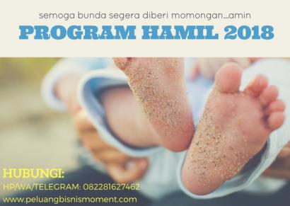 program hamil 2018