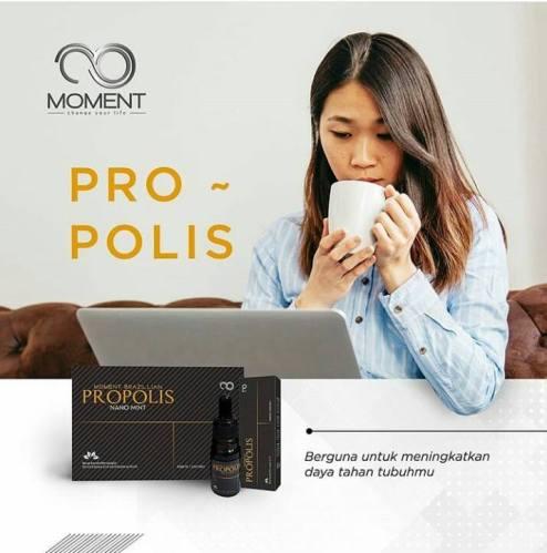 moment propolis 1