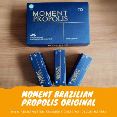 MOMENT PROPOLIS
