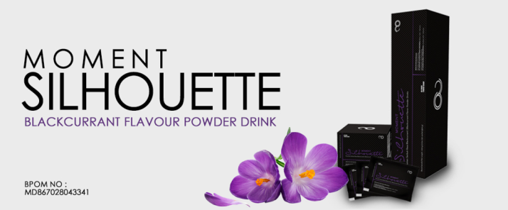 jual silhouette moment