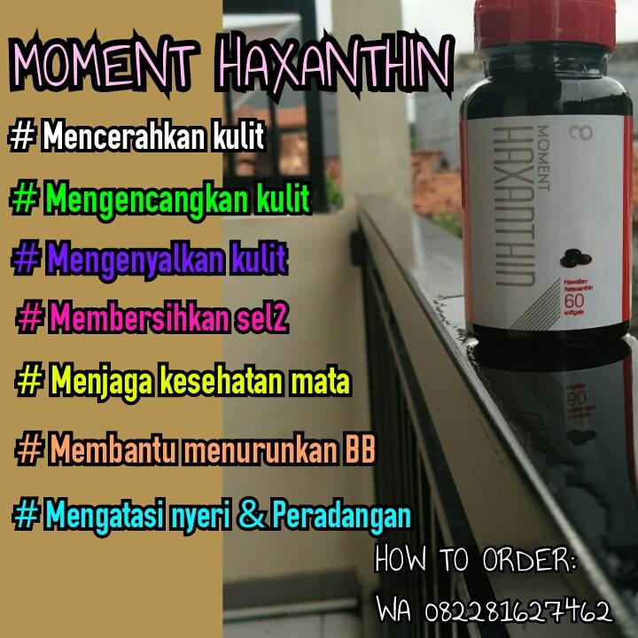 moment haxanthin (2)