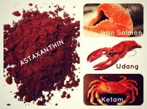 astaxanthin-1