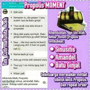 propolis untuk sinusitis 1