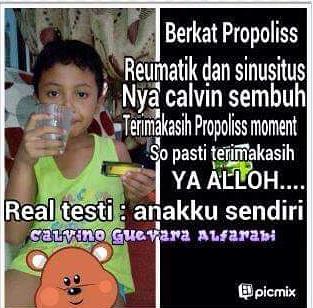 propolis untuk sinusitis 2