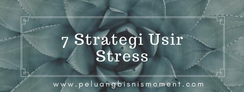 strategi usir stress