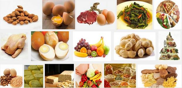 makanan mengandung protein