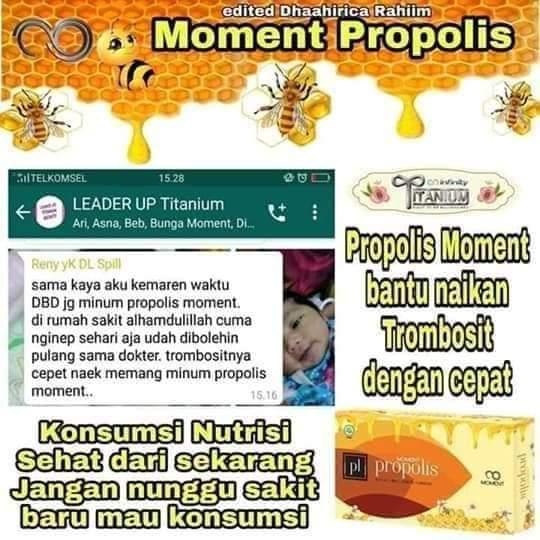 PROPOLIS MOMENT MENAIKAN TROMBOSIT (2)