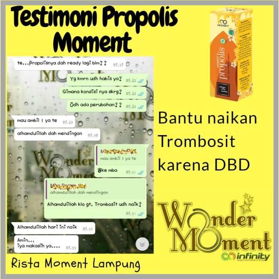 PROPOLIS MOMENT MENAIKAN TROMBOSIT (6)